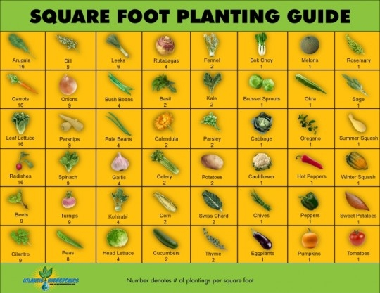 Planting Guide Chart