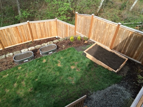 View of 3 Raised Beds