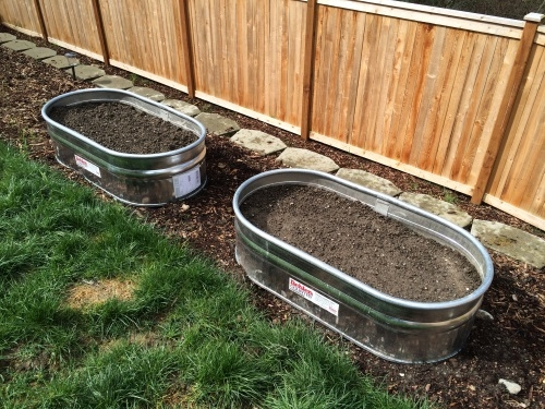 Water Trough Raised Beds