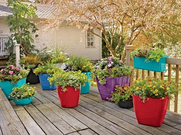 Rolling Patio Planter - August